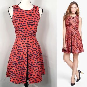 Kensie Orange Pop Dot Fit And Flare Dress XS